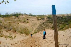 Dune Trail - Are We There Yet