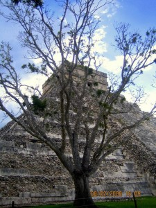 El Castillo - Behind Tree
