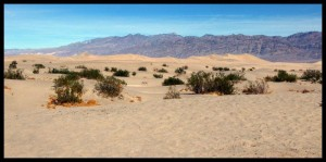 Death Valley 7