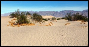 Death Valley 8