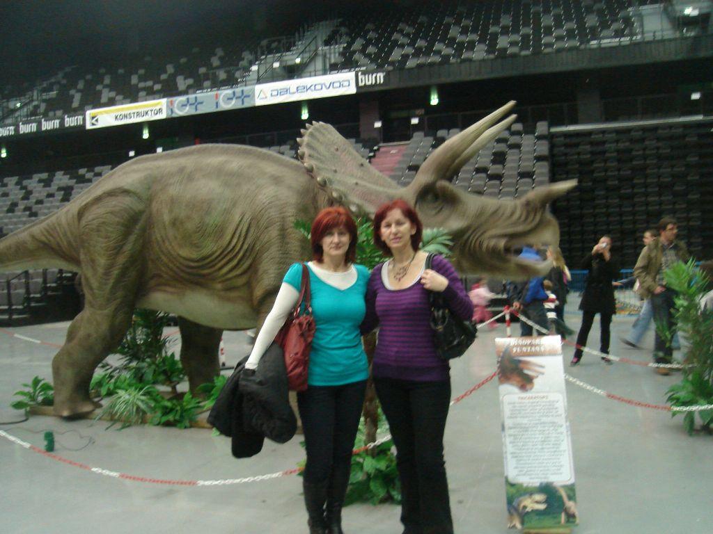 Dino 061