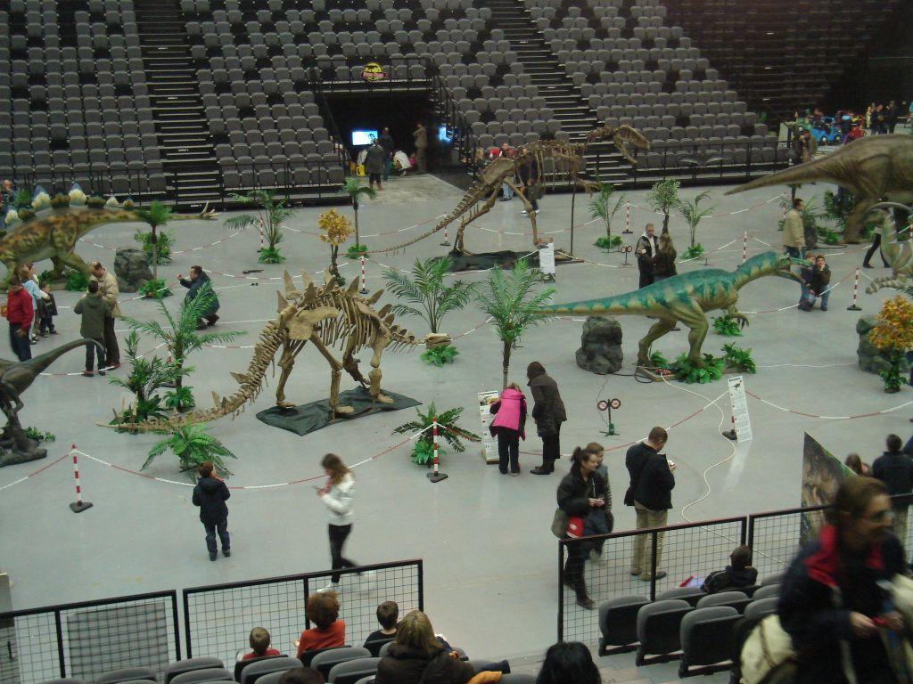 Dino 079