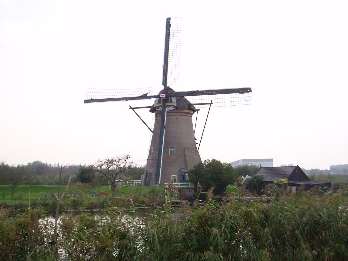 Kinderdijk 2