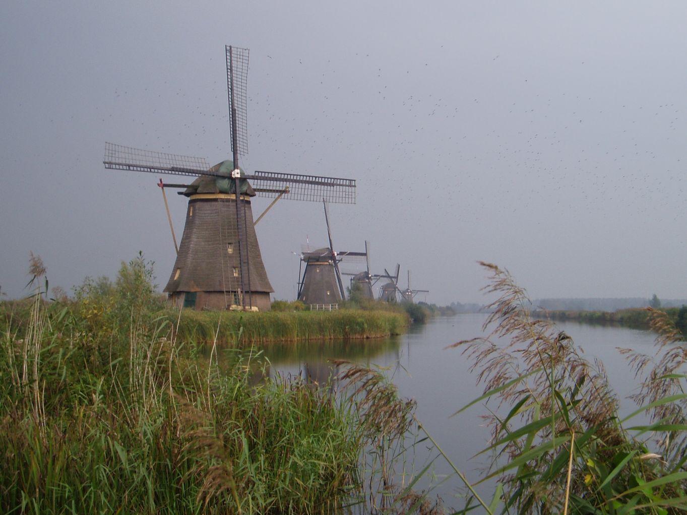 Kinderdijk 5