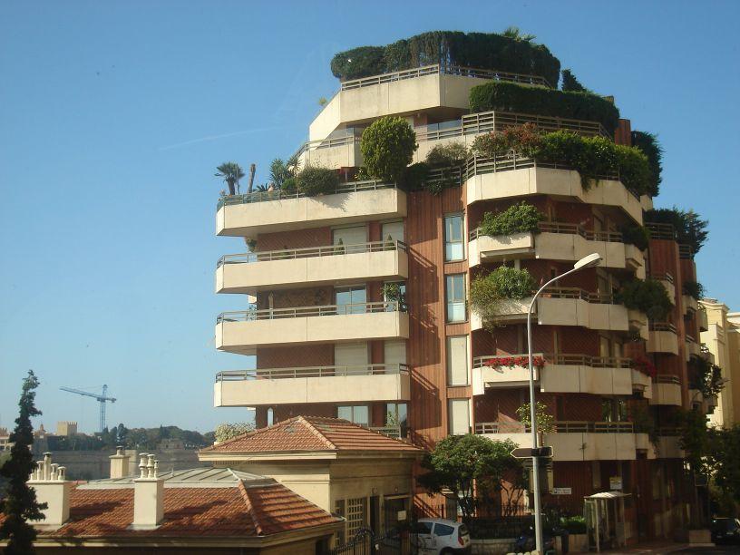 šuma na balkonima