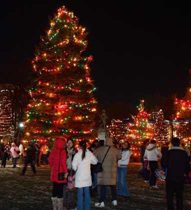 Victoria Park-lights