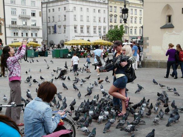 Fotografiranje s golubovima