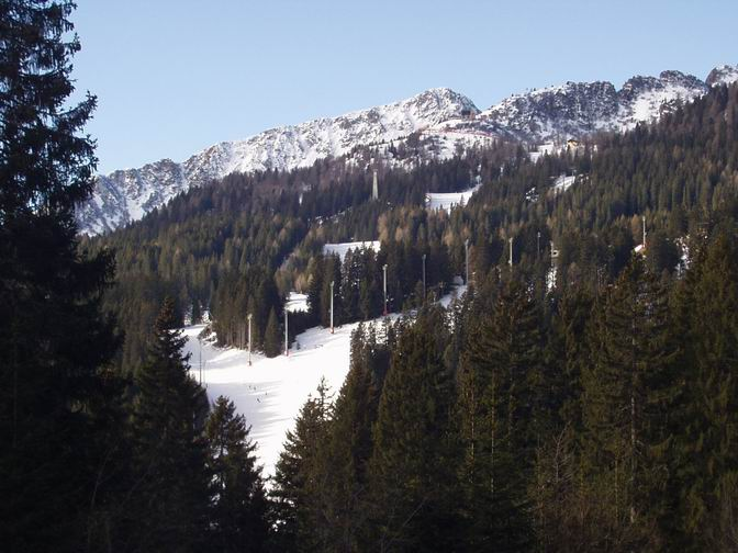 Vrh Cinque Langhi na 2064 m i skijaške staze kroz gustu borovu šumu