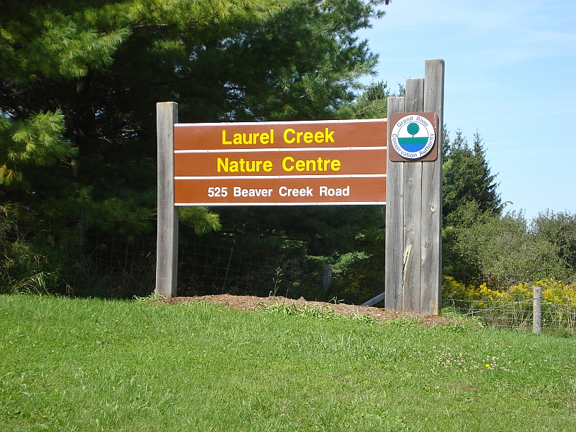 Laurel Creek