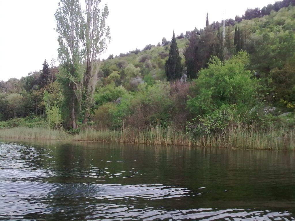 Obala rijeke Norin