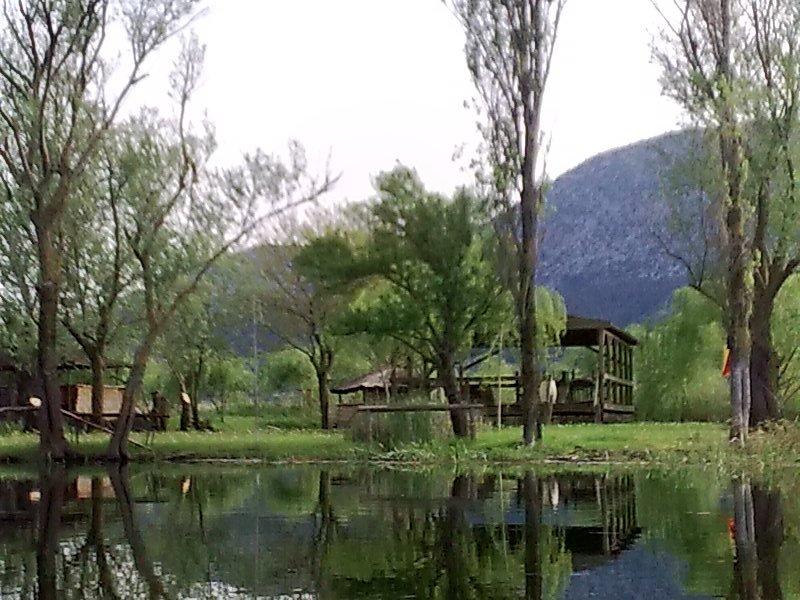 Odmor u zelenoj oazi