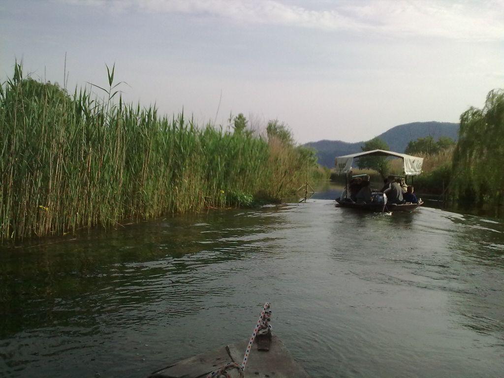 Po zelenoj rijeci