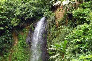 StLucia-Waterfall