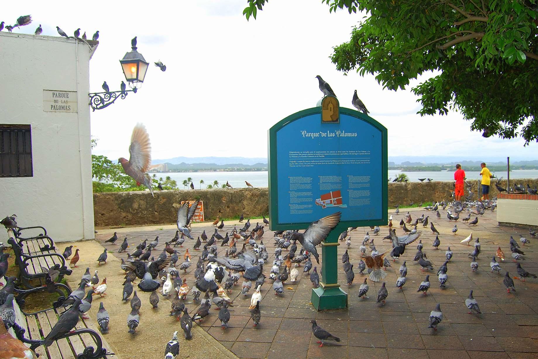 Parquedelas Palomas