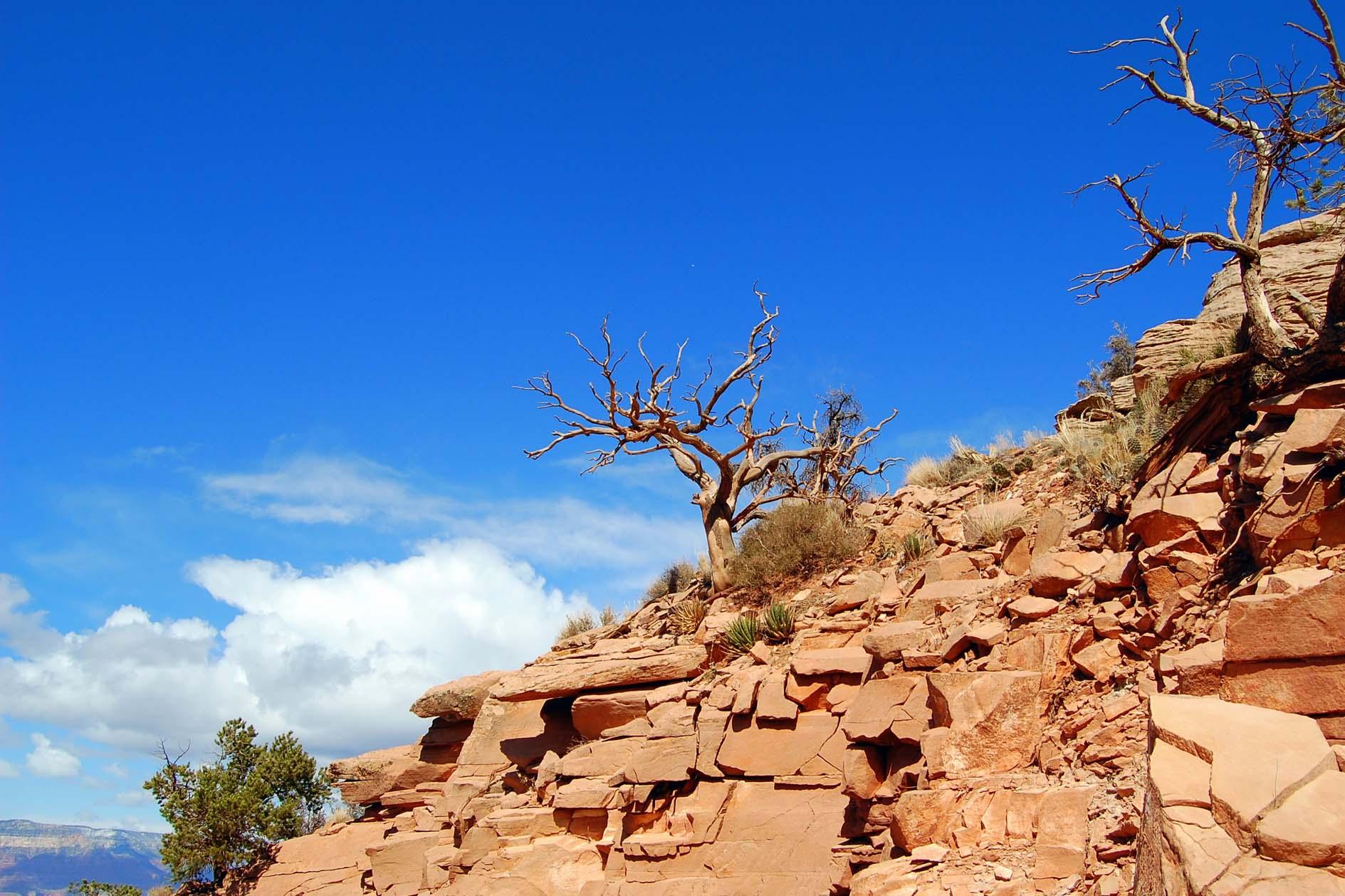 Grand Canyon - Okolis