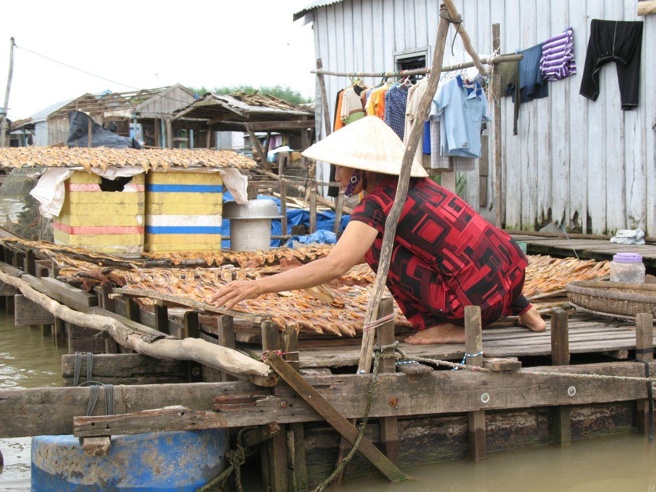 Sušenje ribe