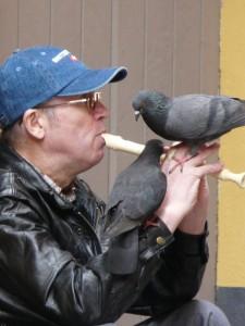 Svirka uz golube