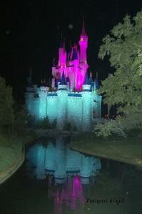 Magic Kingdom - Castle