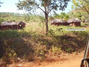 Ovako izgledaju kuće na selu