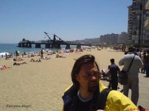 Playa Vina del Marr