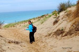 Dune Trail - Last Marker