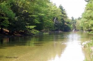 Platte River - Canoeing