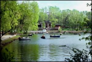 Barke na jezeru