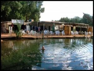 Kupanje u oazi
