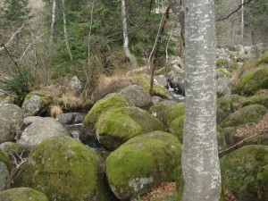 Morenite, kamenja i rijeka ispod