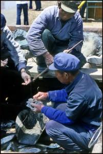 trgovina ribom na plaži