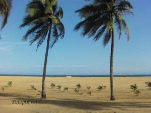 Playa i sidrište