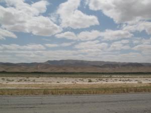 Nije sve bas pustinja