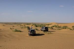 Pustinjski safari