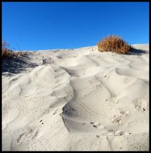 Bijeli pijesak Death Valley-a