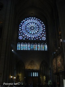 Notre Dame - Rozeta