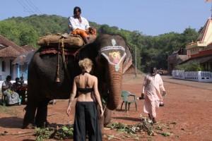 Krasotica i slon