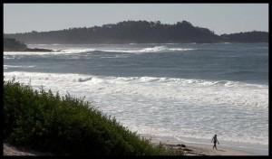 Plaža 5