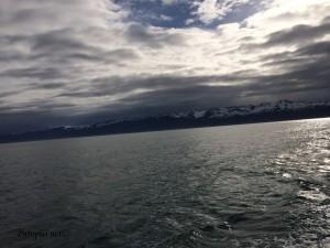 Fjord Eyjafjörður