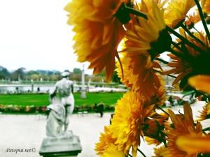 Latinska četvrt u Parizu. Pariz - raj parkova