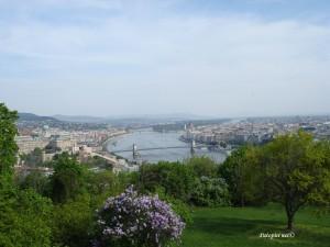 Pogled na grad s Citadele