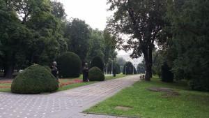 Temišvar - centralni park
