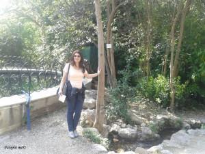 Amelijini vrtovi 2