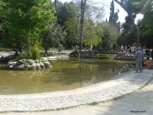 Amelijini vrtovi