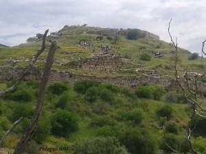 Mikena na vrhu