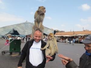 Sa majmunima