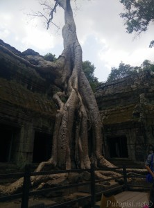 Zaštitni znak hrama