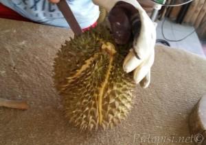 Durian - otvaranje