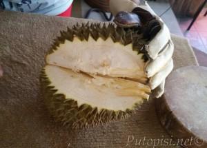 Durian - žudno očekujemo