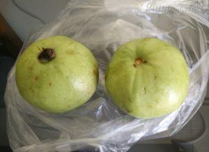 Guava - farang
