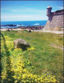 Castelo de Queijo (dvorac sira)
